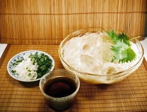 美味しい減塩梅干しの漬け方と簡単な作り方を教えます!