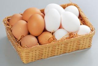 s_egg