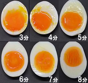 egg374920