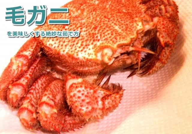 reitoukani-oisii-yudekata05