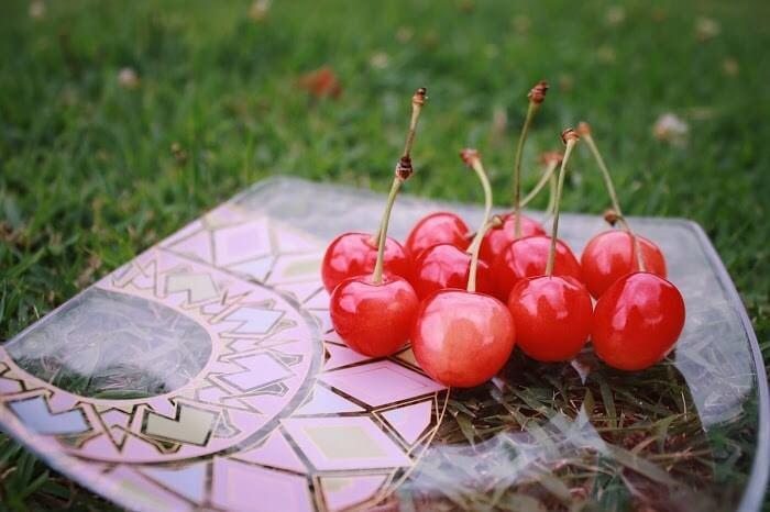 サクランボ狩りで美味しい甘い実を見分けるコツや選び方!スーパーや八百屋でもOK!