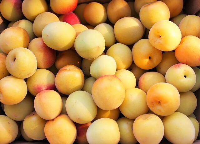 美味しい生梅の実の選び方と見分けるコツと方法!梅酒に最適なものは?