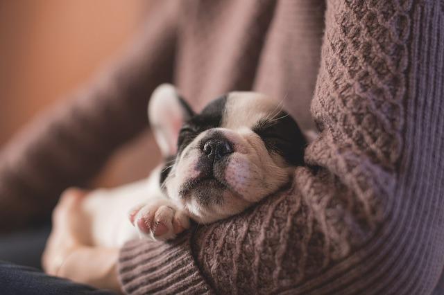 眠りが浅い原因と改善方法5選!寝る前のスマホやストレスにご注意を!