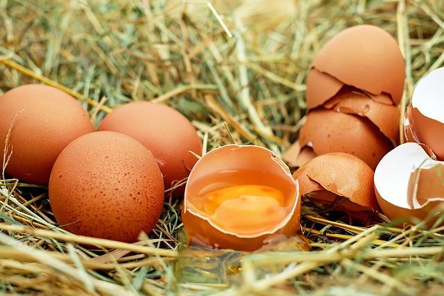 卵と玉子の意味の違いとは?煮卵と味玉は黄身の半熟具合が違う?